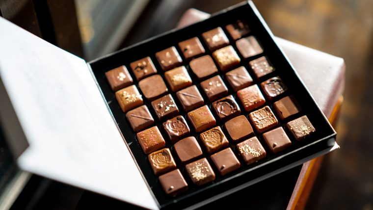 犬のチョコレート中毒の原因は「テオブロミン」