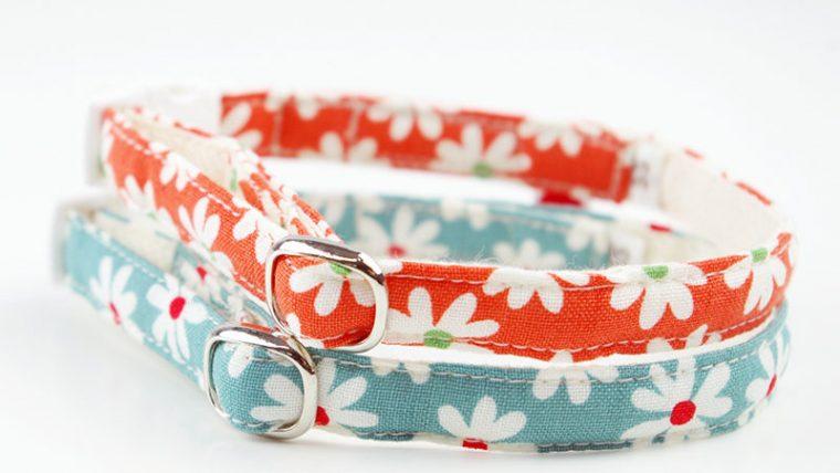 【おうち首輪】日常的に付ける、軽量で丈夫なペット用迷子札