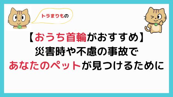 【おうち首輪】ペットの迷子札はこれがおすすめ!災害時にも便利