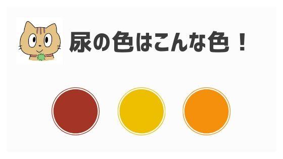 おしっこ が 黄色 尿の色が薄い?透明な尿は正常? 健康ハウツーブログ