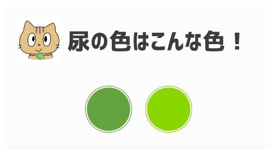 黄 緑 おしっこ