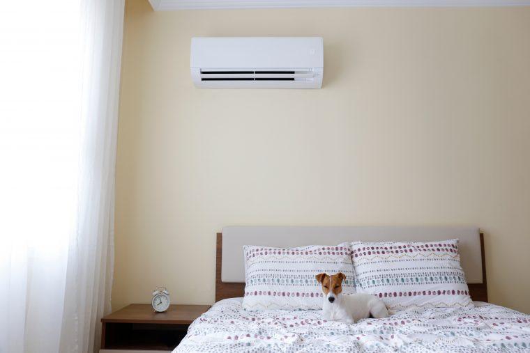 夏場の室温は25~28℃前後がいい