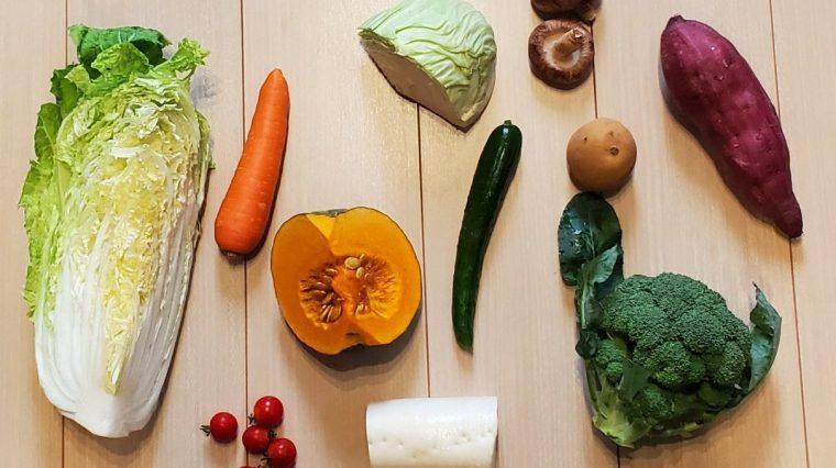 【簡単】手作り犬の健康野菜スープのおすすめ野菜11種類