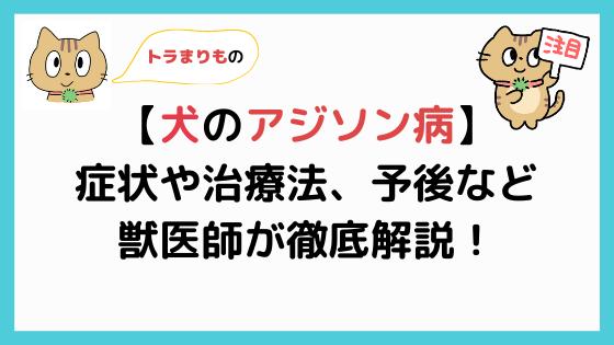 【犬のアジソン病(副腎皮質機能低下症)まとめ】獣医師が徹底解説!