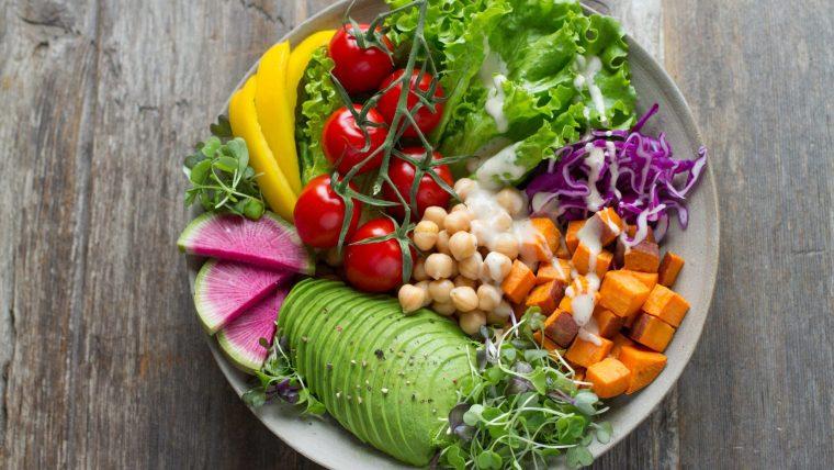 犬に野菜は必要?必要ない?【おすすめ野菜の種類や量も解説!】