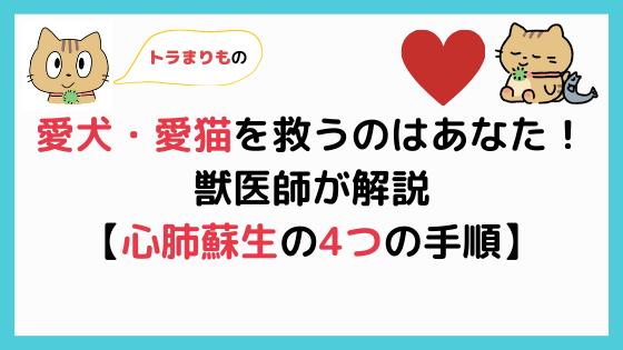 【犬猫の心肺蘇生4つの手順】心臓マッサージと人工呼吸のやり方【あなたが救う!】