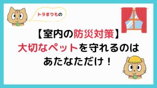 【室内編】ペットの防災対策【愛犬・愛猫を守れるのはあなただけ!】