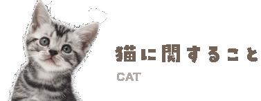 猫に関すること