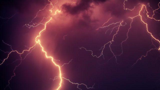 【犬や猫は地震や雷が分かる!?】ペットの恐怖症やパニックの対策を獣医師が解説