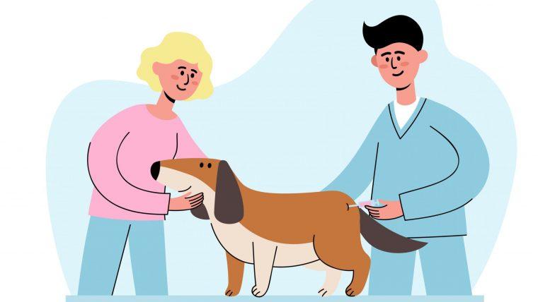 犬のワクチンは毎年打つべきか?抗体価についても解説