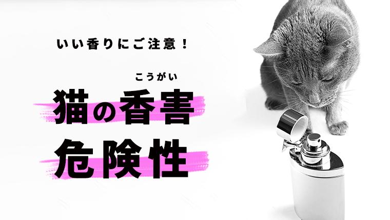 【猫の香害;こうがい】においによる健康被害